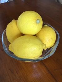 保存食作り始めました。①レモンシロップ&レモン塩 - Blooming Kitchen 坂の上の小さな料理教室