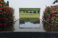 中之条ガーデンズ2020#2和風モダンのローズガーデン - 風の彩り-2