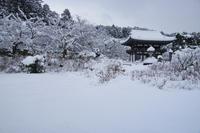 丹州観音寺 - Deep Season