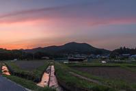 巾着田のトワイライトとホタル - デジカメ写真集