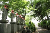 あじさいの咲くお寺へ【2】 - 写真の記憶