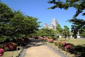 姫路城と新緑 -