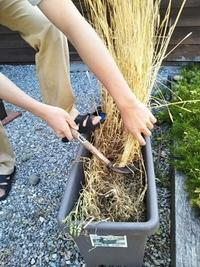 小麦も - よろこびをつむぐ。