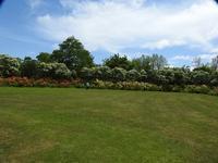 百合が原公園(その1) - 小さなお庭のある家3