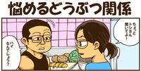 【あつまれどうぶつの森】悩めるどうぶつ関係 - 戯画漫録