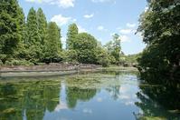 5月の井の頭公園で☆ - さんじゃらっと☆blog2