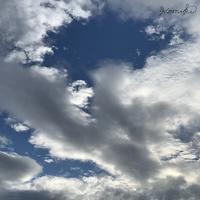 梅雨入り&ゼリー - komikiの日記