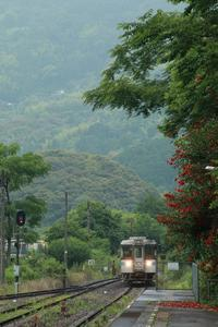 土讃線 4729D吾桑駅 - 南風・しまんと・剣山 ちょこっと・・・