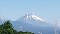 ぼっち飯&富士山&チワワなど♪ - 白い羽☆彡の静岡県東部情報発信・・・PiPiPi♪
