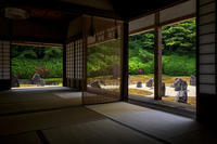 サツキ咲く光明院 - 花景色-K.W.C. PhotoBlog