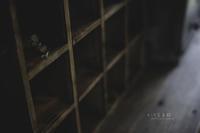 森のオト-4 - チンク写真館