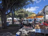 ひさびさのfarmer's market - ブリアンヌのお散歩日記
