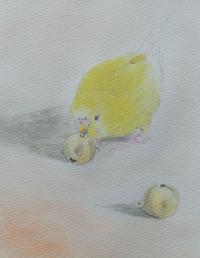 僕のおつかい - 水色堂 ~Blue & Yellow Budgie~