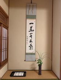 久しぶりに茶道教室でした - orihime's cafe