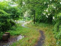 空堀川旧流路と暗渠 - ひのきよ