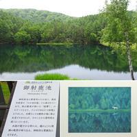 信州旅行④ 2日目観光は高原の美しい御射鹿池と白駒の池6/9 - ♪ミミィの毎日(-^▽^-) ♪