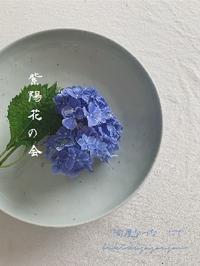 紫陽花の会2020@陶屋なづなさん - tukikusa note
