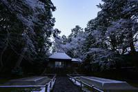 法然院 - Deep Season