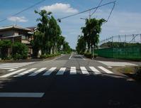 都市計画道路3・4・5東久留米市柳窪2020年6月 - ひのきよ