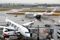 2019年11月羽田遠征 その12 2機のJAL A350 - 南の島の飛行機日記