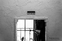 雑貨カフェ「Zakka Hina」-4 - チンク写真館