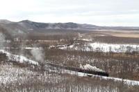 寒風に煙吹き飛ぶ釧路湿原- 2020年・釧網線 - - ねこの撮った汽車