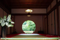 丸窓の緑 - jumhina biyori*