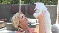 【訃報】トリー・ウィルソンの愛犬クロエが死去 - WWE Live Headlines