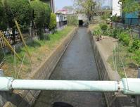 狭山市赤間川(1) - ひのきよ