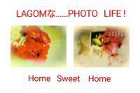 One   Scene (38) - LAGOMな……PHOTO   LIFE !