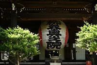 柳谷楊谷寺さん~八坂神社 - 足る