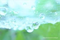 après la pluie - bons souvenirs