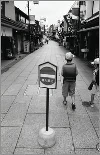 通学路 - 心のカメラ   more tomorrow than today ...