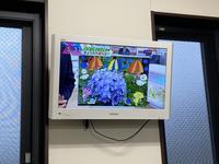 読売テレビ「ニュースten.」、三室戸寺のあじさい園紹介 - 【飴屋通信】 京都の飴工房「岩井製菓」のブログ