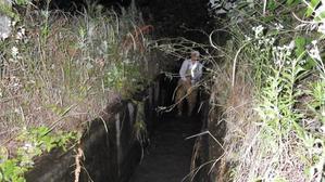 ビオパークの小川にホタルホタルをお引越し -
