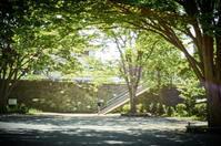 公園(3cut) -     ~風に乗って~    Present