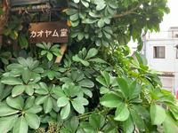 天神橋筋六丁目のエスニック料理「カオヤム堂」 - C級呑兵衛の絶好調な千鳥足