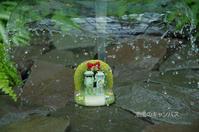 梅雨だもんね - 潮風のキャンバス