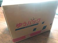 日本から荷物が届きました - ぶろぐ