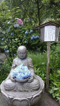 明月院の花想い地蔵 - 鴎庵