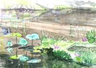 蓮池-2 - ryuuの手習い