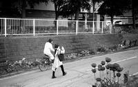 コートの人や半袖の人と『女帝 小池百合子』 - 照片画廊
