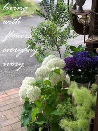 今日もOPENしました〜♬ -  Flower and cafe 花空間 ivory (アイボリー)