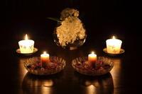 紫陽花とキャンドル - ecocoro日和
