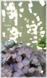 夏至の日の日食・・・ - おだやかに たのしく Que Sera Sera