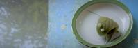 文月のお菓子 * un gâteau au mois de lettre - ももさへづり*うた暦*Cent Chants d' une Chouette