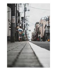 日曜こもごも - ♉ mototaurus photography