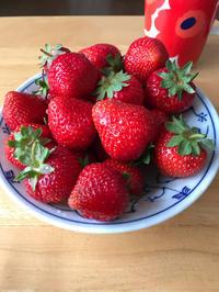 苺の季節♪ そして二十歳(^-^) - 笑う門には福来たる