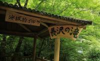 長沢の滝へ(津野町) - ハチミツの海を渡る風の音