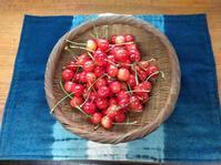 赤い宝石さくらんぼ - Tumugitesigoto4419's Blog